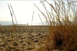 Playa Saladar Ubanova