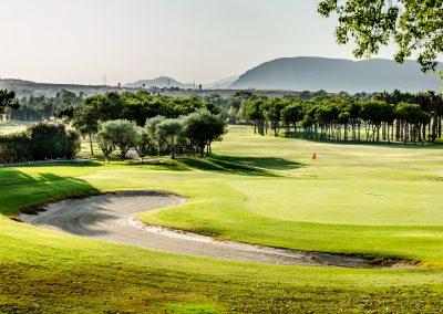 El plantio golf (31)