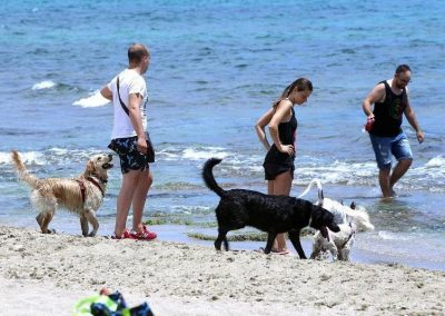 Playa de Aguamarga.  Playa adaptada para perros