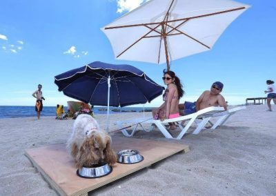 Playa de Aguamarga. Dog-friendly beach